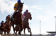 Sophisticated london hen party idea: horse racing